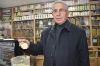 KUŞBURNU - Kış Hastalıklarının Şifası Doğal Ürünlerdir
