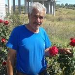 TIR ŞOFÖRÜ - Osmaniyeli Tır Şoförü İran'da Kalp Krizinden Hayatını Kaybetti