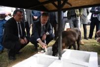 Bursa'da 10 Patiye İyilik Projesi