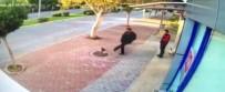 Mama Bırakılmasına Tepki Gösterip Kedileri Tekmeledi