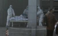 PROFESÖR - Japon Bilim Adamlarından Korona Virüsü Araştırması