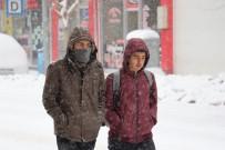 İPEKYOLU - Van'da Kar Esareti