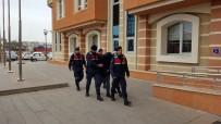 HAKKARİ YÜKSEKOVA - Kastamonu'da PKK/KCK Üyesi Gözaltına Alındı