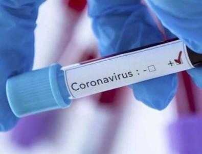Koronavirüs tedavisinde büyük adım!