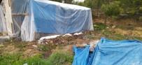 KARBONMONOKSİT - Çadırda Mangal Kömüründen Zehirlenerek Öldü
