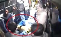 KıYAMET - Halk Otobüsüne Binen Köpeği Gören Vatandaşlar Büyük Panik Yaşadı