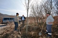 EĞİTİM DERNEĞİ - Porsuk Mesire Alanı Ağaçlandırılıyor