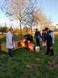 PİRİ REİS - Darıca Belediyesi, Sokak Hayvanlarını Unutmadı