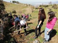 MEHMET ÖZDEMIR - Özdemir; 'Orman Ekosisteminden Alacağımız Çok Ders Var'