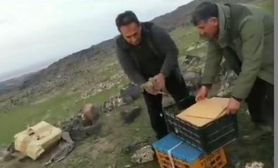 Iğdır'da 'Canlı Mühre' İle Keklik Avlayan 7 Şahsa 64 Bin 624 Lira Ceza