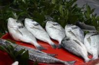ALABALIK - Balık Piyasasında Durgunluk