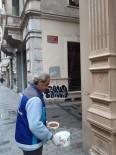 BEYOĞLU BELEDIYESI - Beyoğlu'nda Sokak Hayvanları Unutulmadı