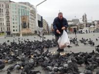 TAKSIM MEYDANı - Taksim Meydanı Kuşlara Kaldı
