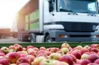 SINIR KAPISI - Ticaret Normal Akışına Dönüyor
