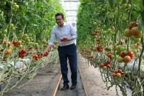 BAĞIŞIKLIK SİSTEMİ - Çiftçiye Faizsiz Ve İndirimli Kredi Desteği