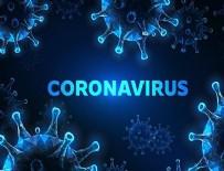 KAĞIT HAVLU - Korona virüsü ile ilgili doğru bilinen yanlışlar!