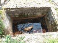 YAVRU KÖPEK - Sulama Kuyusuna Düşen Yavru Köpeği İtfaiye Kurtardı