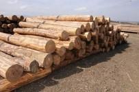 ORMAN İŞLETME MÜDÜRÜ - Kütahya Orman Bölge Müdürlüğünde E - Satış Uygulaması