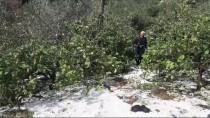 HASAR TESPİT - Mersin'de Dolu Yağışı Hayatı Olumsuz Etkiledi