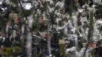 FARUK ÇELİK - Sarıkamış Kar Yağışıyla Beyaza Büründü