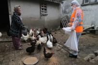 HASAN AKGÜN - Emine Teyze, Tavuklarının Yemi Bitince Belediye Başkanını Aradı