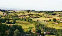 SAĞLIKLI YAŞAM - Korona'nın uğramadığı mucizevi köy