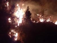 Arhavi'deki Orman Yangını Kontrol Altına Alındı