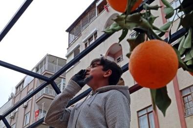Antalya'da 'Korona Alışverişi' Nostaljiye Götürdü