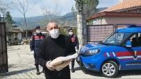 BÜLENT ERSOY - Ünlü Söz Yazarı Kazdağları'nda 3 Gün Ekmeksiz Kaldı