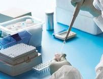 HOLLANDA - Yeni çalışma ortaya çıkarttı! Virüs Vücudumuza oradan giriyor!