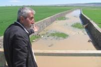YAĞAN - 20 Yıl Aradan Sonra Tahta Köprü'den Su Akmaya Başladı