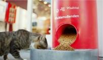 VODAFONE - Türkiye Vodafone Vakfı'ndan 'Salgında Sokak Hayvanlarını Unutma' Çağrısı