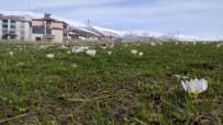 YAĞAN - Bingöl'de Bahar Ve Kış Bir Arada