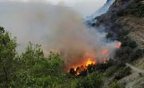 YANGINA MÜDAHALE - Muz Bahçesinde Çıkan Yangın Ormana Sıçradı