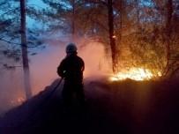 ŞİDDETLİ RÜZGAR - Seydikemer'de Orman Yangını