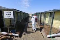 NEVŞEHİR BELEDİYESİ - Hayvan Kasabası Düzenli Olarak Dezenfekte Ediliyor