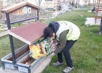 NEVŞEHİR BELEDİYESİ - Nevşehir Belediyesinden Sokak Hayvanlarına Mama Ve Su Desteği