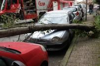 ŞİDDETLİ RÜZGAR - Park Halindeki Aracın Üzerine Ağaç Devrildi