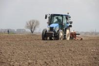 ALLAH - Çiftçiler Tarlada Havuç Ekimi Mesaisine Başladı
