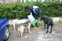 SOKAK HAYVANLARI - İncirliova Belediyesi Can Dostlar İçin Mama Bırakıyor