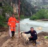 Mahsur Kalan Köpek Ve 6 Yavrusunu İtfaiye Ekipleri Kurtardı