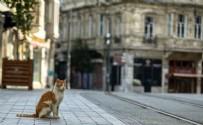 ULUSA SESLENİŞ - 4 günlük sokağa çıkma kısıtlamasında yeni gelişme! Muaf tutulan kent sayısı 6'ya çıktı