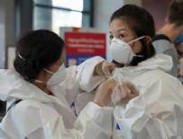 GÜNEY AFRIKA - İki ülke daha korona virüsü yendi