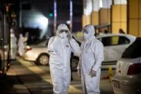 KOLERA - Dünya Sağlık Örgütü'nden gündeme bomba gibi düşen açıklama!