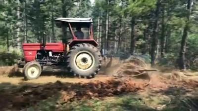 GÜNCELLEME - Uşak'taki Orman Yangını Kontrol Altına Alındı