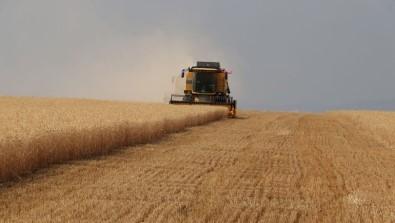 Tarımsal Girdi Fiyat Endeksi Yıllık Yüzde 7,66, Aylık Yüzde 0,13 Arttı