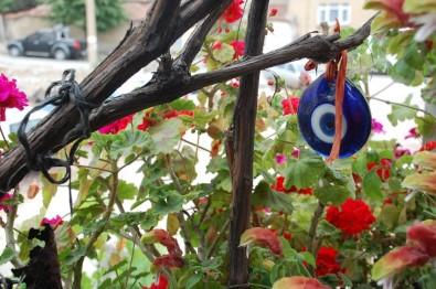 Ev Ve Bahçesinde Çiçek Ve Sebze Yetiştiren Kadın Açıklaması