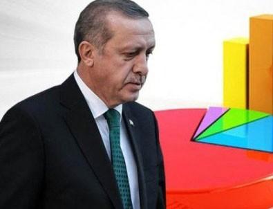 İşte Erdoğan'ın masasındaki anket!