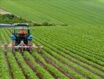 FERHAT PIŞMAF - Ziraat Bankası'ndan çiftçiye yeni kredi müjdesi