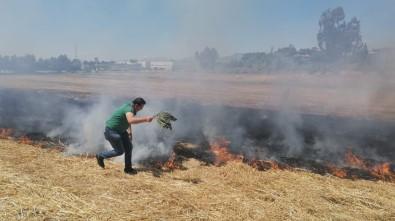 Anız Yangınına İlk Müdahaleyi Ağaç Dallarıyla Yaptılar